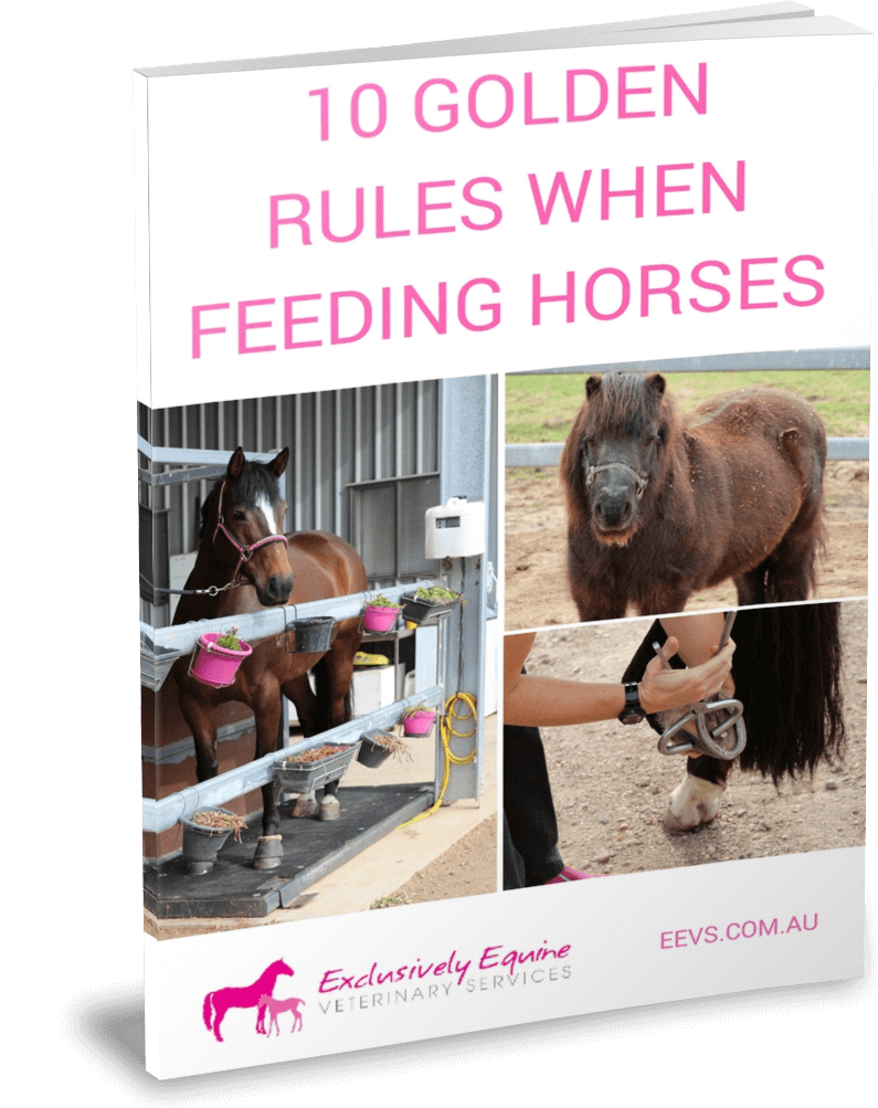 10 golden rules when feeding horses Book Skin Problems
